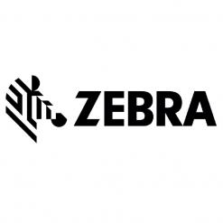 Color Ribbons (Zebra)